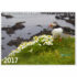 calendrier-2017_paysages-islande_version-2_couverture