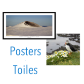 Toiles-Posters